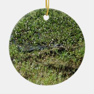 Louisiana Swamp Alligator in Jean Lafitte Ceramic Ornament