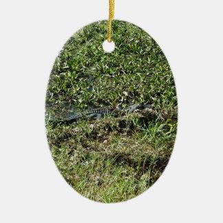 Louisiana Swamp Alligator in Jean Lafitte Ceramic Oval Ornament
