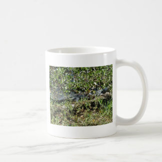 Louisiana Swamp Alligator in Jean Lafitte Close Up Coffee Mug