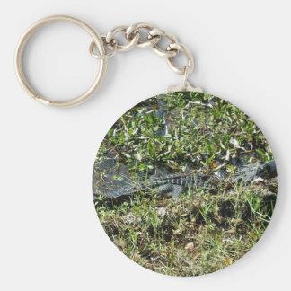 Louisiana Swamp Alligator in Jean Lafitte Close Up Keychain