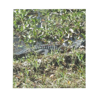 Louisiana Swamp Alligator in Jean Lafitte Close Up Notepad
