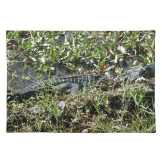 Louisiana Swamp Alligator in Jean Lafitte Close Up Placemat