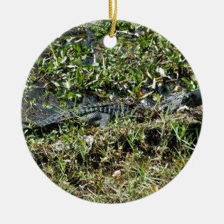 Louisiana Swamp Alligator in Jean Lafitte Close Up Round Ceramic Ornament