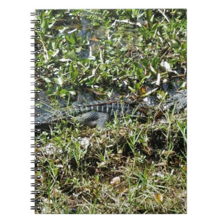 Louisiana Swamp Alligator in Jean Lafitte Close Up Spiral Notebook
