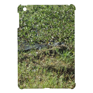 Louisiana Swamp Alligator in Jean Lafitte iPad Mini Cover