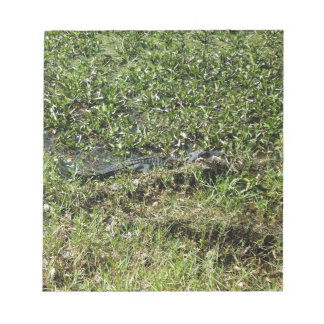 Louisiana Swamp Alligator in Jean Lafitte Notepad