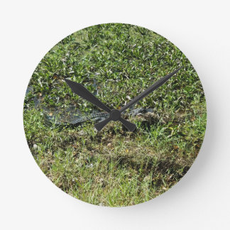 Louisiana Swamp Alligator in Jean Lafitte Round Clock