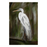 Louisiana Swamp Crane Posters