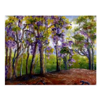 Louisiana Trees and Wisteria Postcard