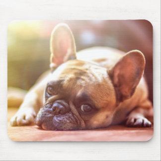 Lounging Around French Bulldog Mouse Pad