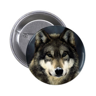 Loup Badge Rond 5 Cm