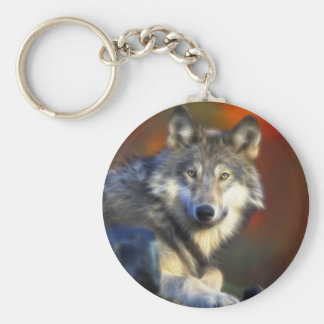 Loup gris, photo numérique d'espèce menacée porte-clef