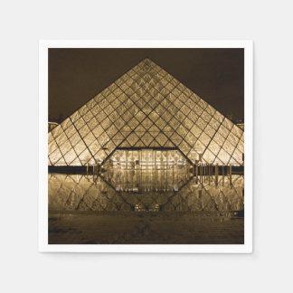 Louvre, Paris/France Disposable Napkins