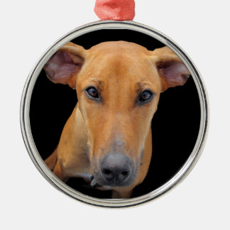 Lovable Rhodesian Ridgeback Dog Metal Ornament