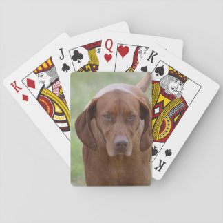 Lovable Vizsla Poker Deck