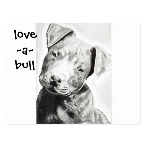 Love-a-bull Pitbull Puppy by Jacob Grimm Postcards