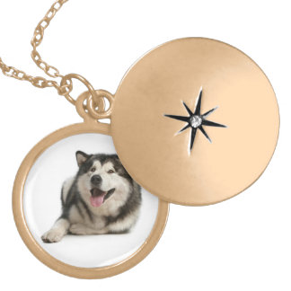 Love Alaskan Malamute Puppy Dog Pendant Necklace