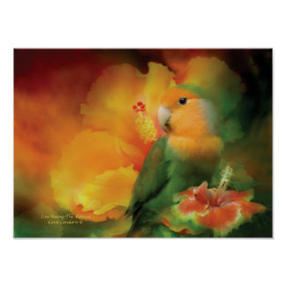 Love Among The Hibiscus Art Poster/Print Poster