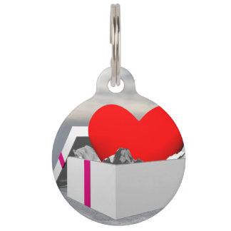 Love as a gift - 3D render Pet Tag
