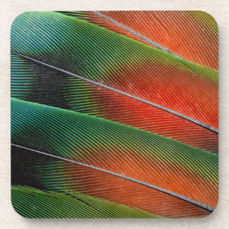 Love bird feather close-up drink coasters