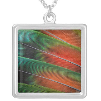 Love bird feather close-up silver plated necklace
