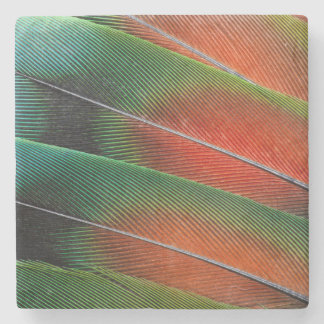 Love bird feather close-up stone coaster