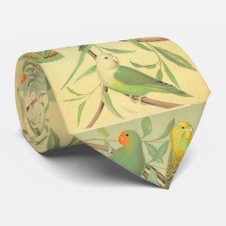 love birds  and parakeets tie