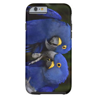 Love Birds (case) Tough iPhone 6 Case