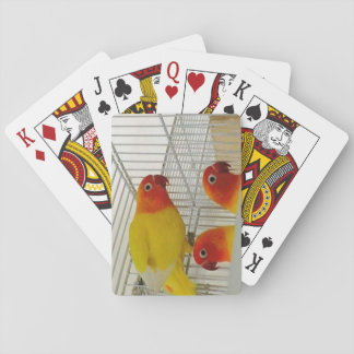 LOVE BIRDS PLAYING CARDS