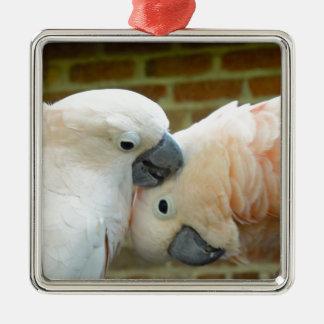 Love Birds Silver-Colored Square Ornament