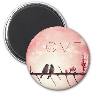 Love birds story magnet