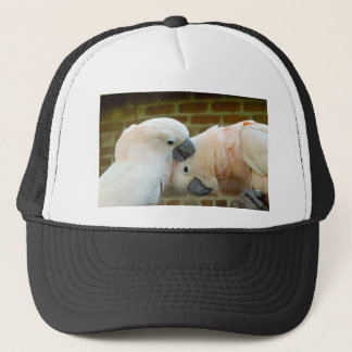 Love Birds Trucker Hat