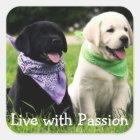 Love Black & Yellow Labrador Retriever Puppy Dogs Square Sticker