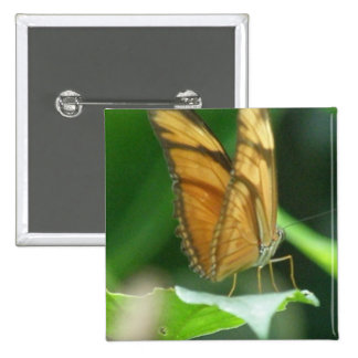 Love Butterflies Square Pin