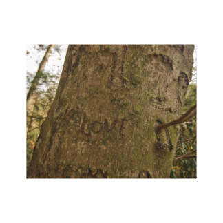 Love Carved in a Tree Canvas Print