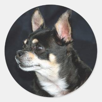 Love Chihuahuas Round Sticker
