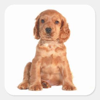 Love Cocker Spaniel Puppy Dog Stickers