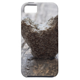 love concept iPhone 5 cases