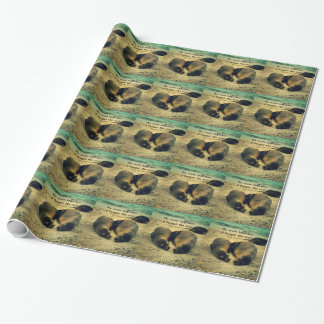 Love couple quote sea lions on the beach wrapping paper