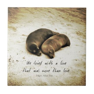 Love couple romantic quote sea lions on the beach tile