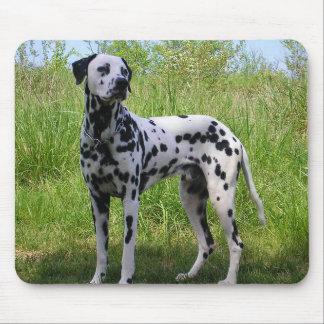 Love Dalmatian Puppy Dog Black Mousepad
