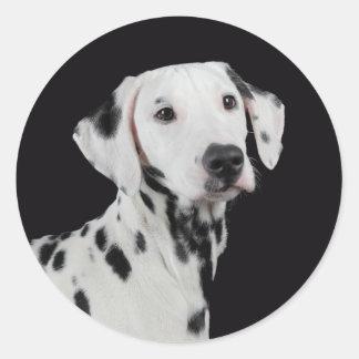 Love Dalmatian Puppy Dog Greeting Stickers