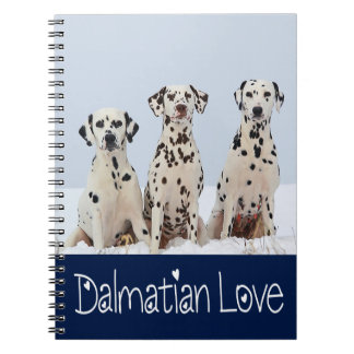 Love Dalmatian Puppy Dog In Snow  Spotted Fire Dog Notebooks