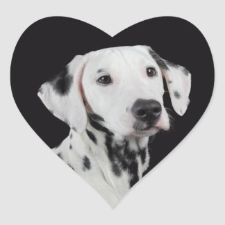 Love Dalmatian Puppy Dog Sticker / Seal