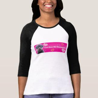 Love Does Not Discriminate Raglan Shirt - Black