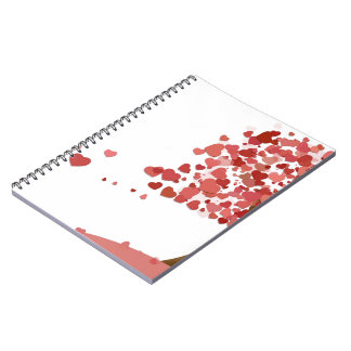 Love Falls Notebook