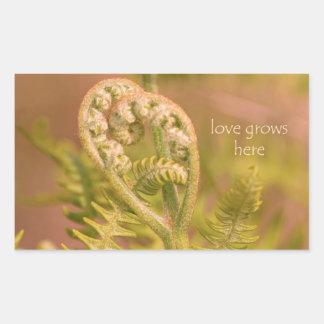 Love Ferns Sticker