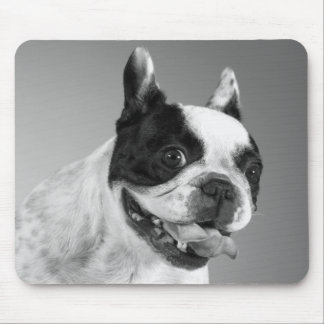 Love French Bulldog Puppy Dog Black And White Mouse Pad