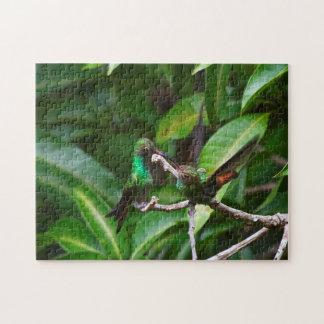 Love Green-Emerald Hummingbird Puzzle
