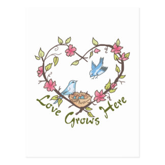 LOVE GROWS HERE POSTCARDS